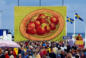 Kivik – le paradis de la pomme en Suède