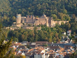 Heidelberg Castle (with the Great Vat and the Apothecary Museum)