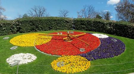 Flower Clock / L´Horloge Fleurie