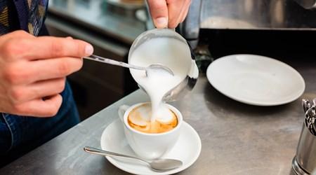 Bratislava Café Franz Xaver Messerschmidt