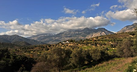 An agro-ecological journey to the olive's environment