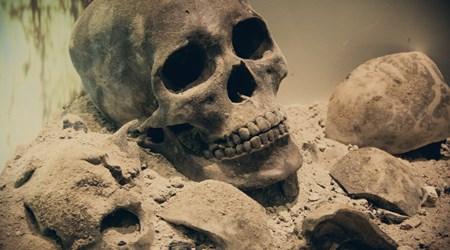Catacombe dei Cappuccini (The Catacombs)