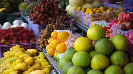 San Andres Market