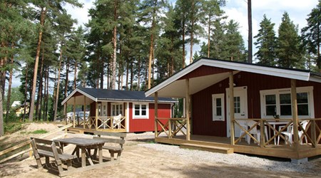 Camp Mid Adventure