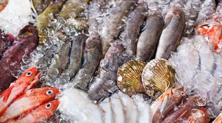 Maine Avenue Fish Market
