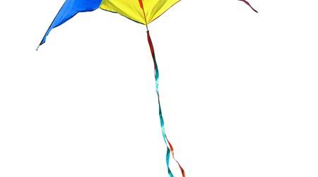 Kites Unlimited & Bird Stuff