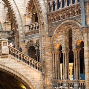 Interior museum / ileana_bt/Shutterstock.com