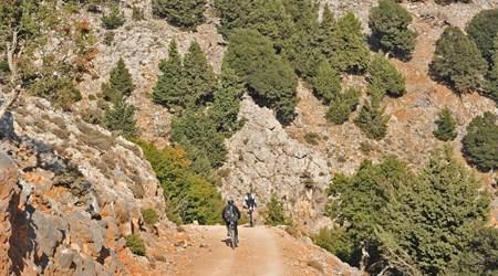 Lassithi Plateau Biking Tour