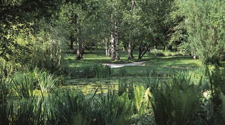 The Ljubljana Botanical Garden