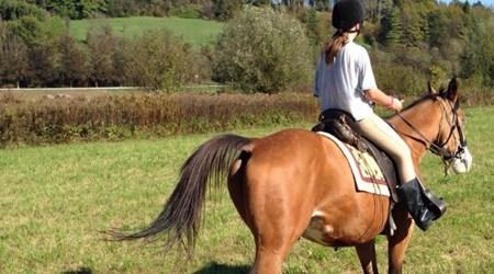 Equestrian Club Kumrovec