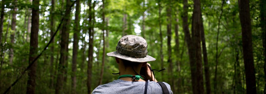 Photo from the back of hipster nomad adventurer exploring exotic forest in national park wears a panama hat and makes photos of inspirational nature