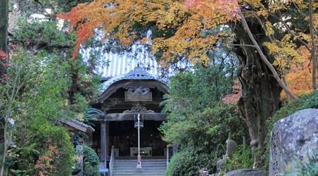 Joruri-ji Temple