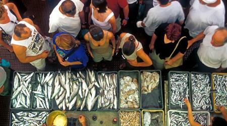 The City Market