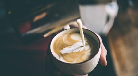 LOKL Coffee Co.