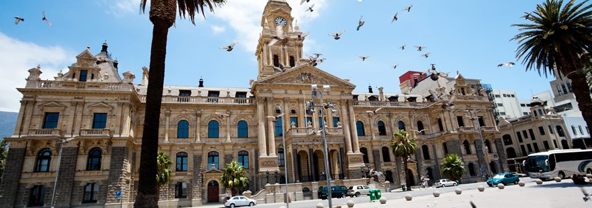 pigeons flying over city hall of cape town, south africa