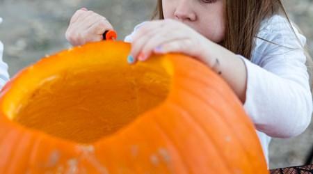 Autumn Harvest Fest
