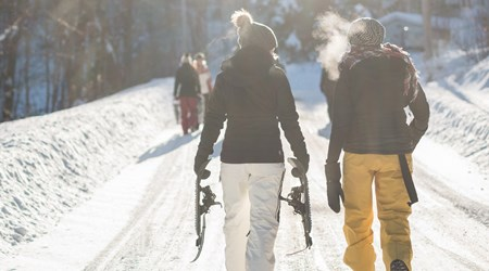 Alpine Guided Tours