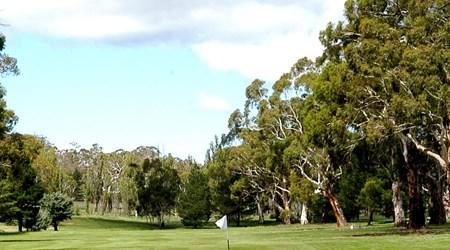 Cooma Golf Club