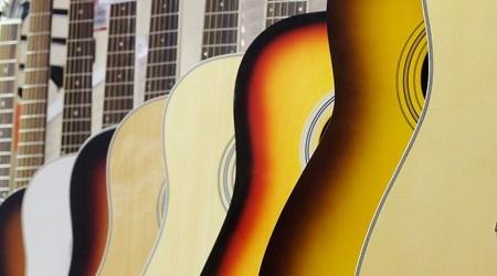 Gruhn Guitars Inc