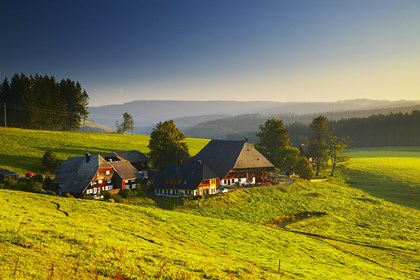 Black Forest Region