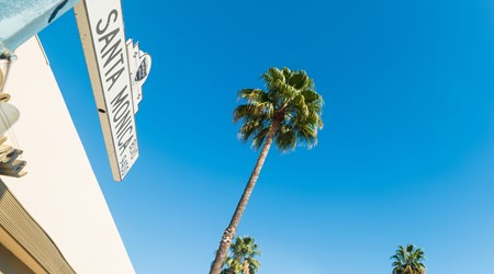 Santa Monica And The Beaches