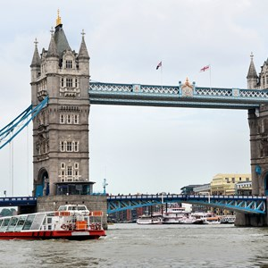 Cruise boats on river Thames / Jorge Felix Costa/Shutterstock.com