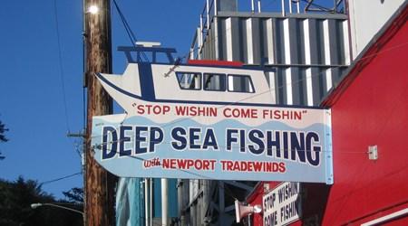 Newport Tradewinds