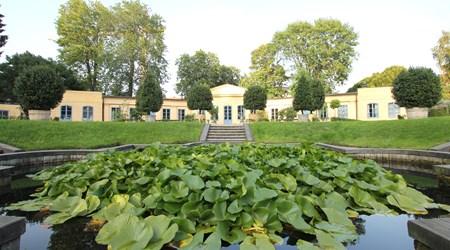 The Linnaeus' Garden