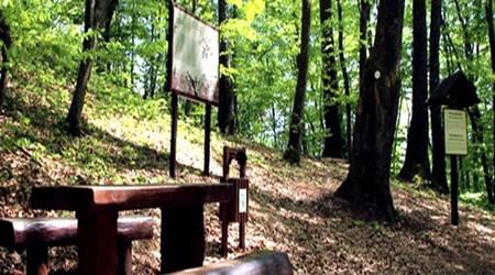 Historical - educational trail Kamenjak