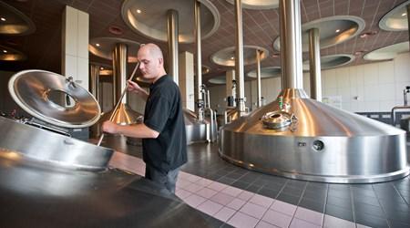 Brewery Stella Artois