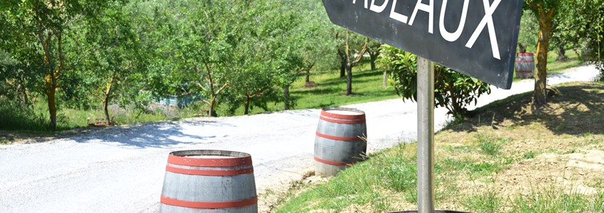 BORDEAUX arrow and wine barrels along rural road