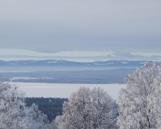 Siljan Winter