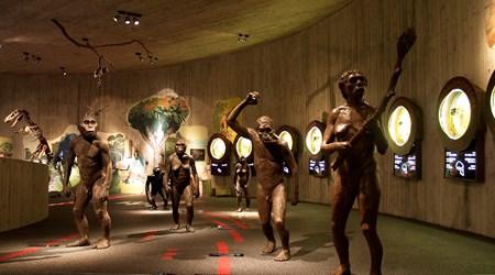 The Krapina neanderthal Museum