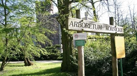 The Kórnik Arboretum