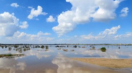 Paralimni Lake