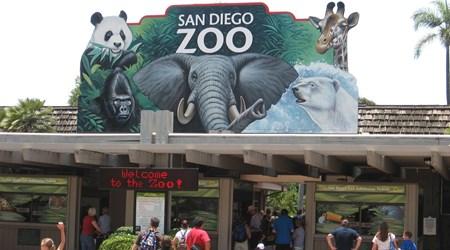 San Diego Zoo Gift Shop