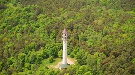 Dziewicza Góra Observation Tower