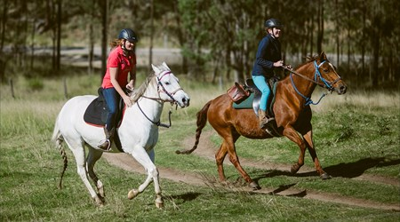 Chapman Valley Horse Riding