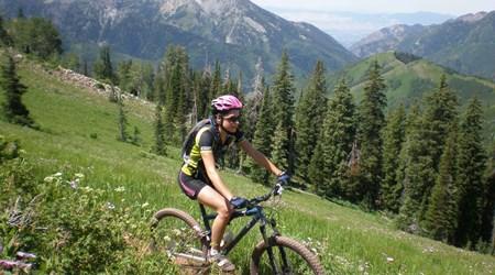 Mountain Vista Touring, LLC
