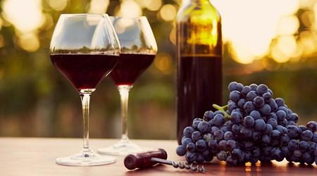 Page Springs Vineyard & Cellars