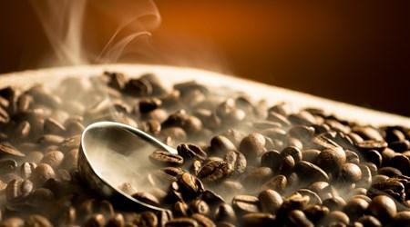 Ueshima Coffee Corp