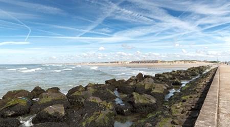 Rotterdam Beach