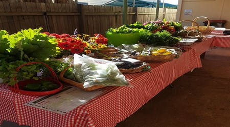 Dungog Local Growers Stall