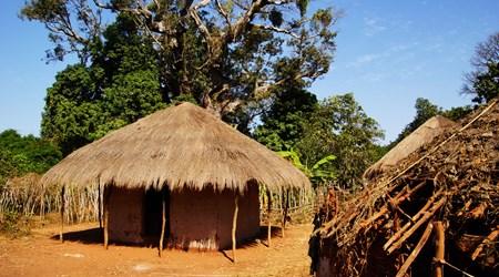 Makasutu Culture Forest
