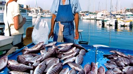 Vieux Port Fish Market