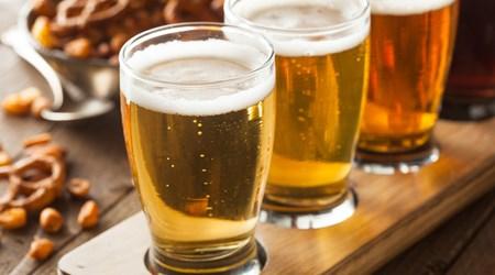 The Barking Deer Brew Pub