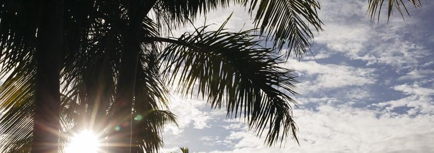 Road Trip through the South Pacific Island Viti Levu, Fiji