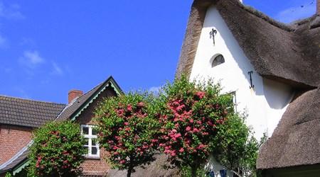 Föhr Island