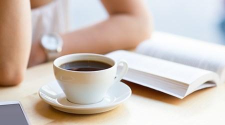 Paludan Bog&Café