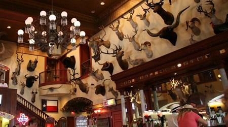The Buckhorn Saloon & Museum